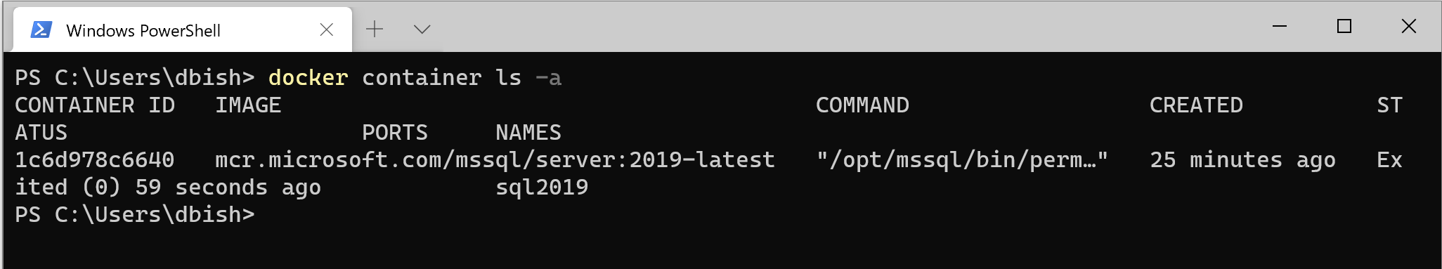 Docker container stop command
